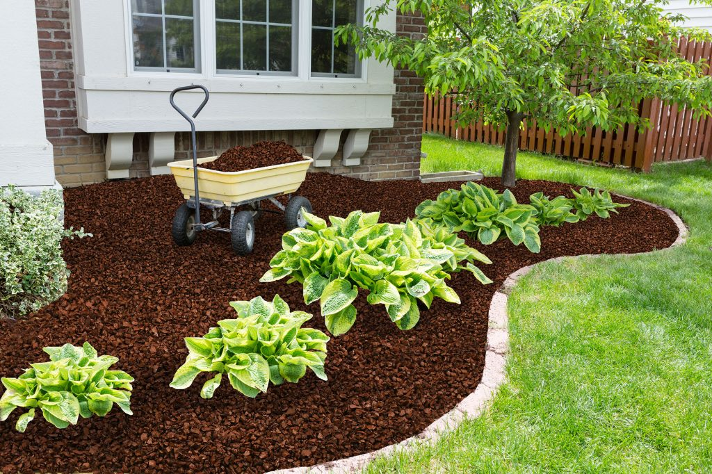 brown rubber mulch by green grass and plants